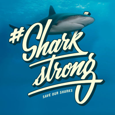 Sharkstrong01_S by Bold Statements